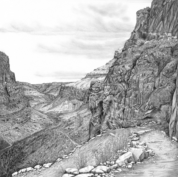 Mountain Drawings by Alberta Pencil Artist Nona Foster