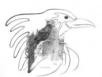 the-ravenf