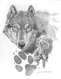 wolf-stalkerf