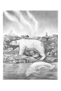 Wapusk White Bear